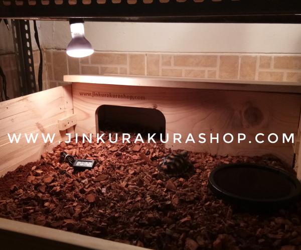 Cara Merawat Kura Kura Darat | Kandang Indoor