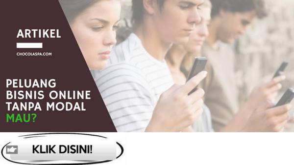 Peluang Bisnis Online Tanpa Modal